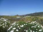 Ganz in der Ferne die Insel La Palma