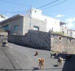 Unsere Begleitung in El Jaral